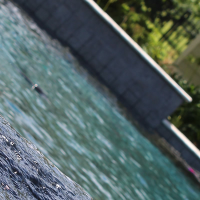 Restorations - Tallahassee Pool Builder & Repair Service - Salvo Pools